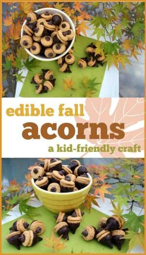 fall-acorns-craft